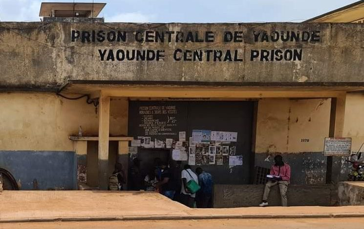 """Amnesty International """"Cameroon: Authorities must urgently protect detainees againstCOVID-19"""""""